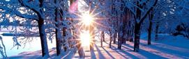 immagine-inverno.jpg